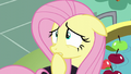 """Fluttershy """"how would I even hear"""" S5E21.png"""