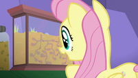 Fluttershy looking at an ant farm S5E19