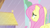 Fluttershy looking at the rain MLPS3