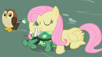 Fluttershy with Tank S2E07
