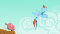 Rainbow Dash laughing at Applejack S6E15