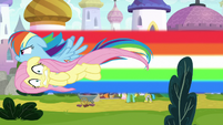 Rainbow and Fluttershy fly past Zephyr S9E4