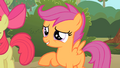"Scootaloo ""What's that sweet tune you're singing?"" S1E18.png"