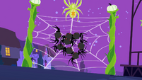 Spiders going onto the web S2E04