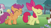 The CMC follows Pipsqueak S5E18