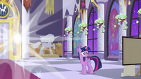 Twilight's friends all teleport away S9E17
