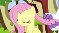 Angel brushes Fluttershy's mane with his claws S5E13.png