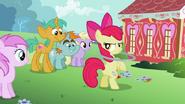 Apple Bloom -You seein' dis