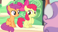 Apple Bloom and Scootaloo excited S4E19