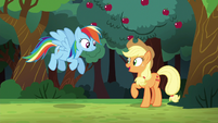 Applejack --I can count on ya to join-- S6E18