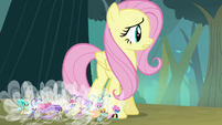 "Fluttershy ""face the breeze together"" S4E16"