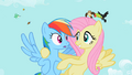 Fluttershy 'don't forget style' S2E07.png