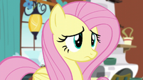 Fluttershy confused S5E5