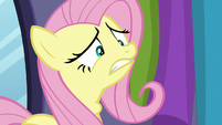 Fluttershy gulping nervously S8E4