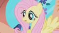 Fluttershy in front of window S01E03.png