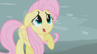 Fluttershy scared by Gilda S1E05
