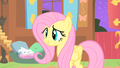 Fluttershy watches the CMC S1E17.png