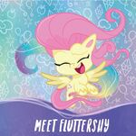 MLP Pony Life Amazon.com promo - Meet Fluttershy 1