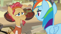 Rainbow Dash approaches an elderly merchant S7E18