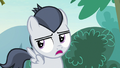 "Rumble ""I won't be getting my cutie mark"" S7E21.png"