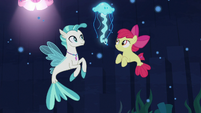 Terramar and Apple Bloom look at jellyfish S8E6