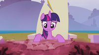 Twilight --whatever Starlight did in the past-- S5E25