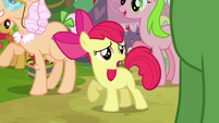 Apple Bloom 'Where is she' S3E08