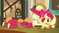 Apple Bloom leaves to continue hunting S9E10