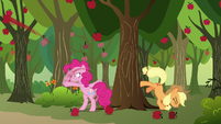 Pinkie Pie and Applejack flinging apples S9E13