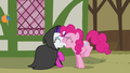 Pinkie Pie bumps into Rarity S3E3.png