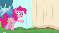 Pinkie points at the curtain S5E11