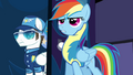 Rainbow 'I think I should be lead pony' S3E7.png
