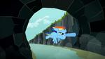 Rainbow Dash entering tunnel S2E07
