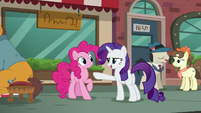 Rarity --Y-Yes, yes, yes-- S6E3