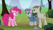 S8E3 Pinkie Pie patrzy na Maud Pie i na Mudbriara