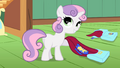 """Sweetie Belle """"and capes!"""" S01E17.png"""