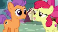 Apple Bloom --wish I'd realized what you needed-- S6E4