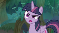 "Fake Twilight ""what is the Tree of Harmony?"" S8E13"