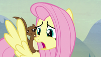 Fluttershy --you see--- S5E23