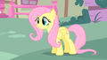 Fluttershy is very happy S1E17.png