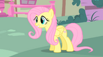 Fluttershy is very happy S1E17