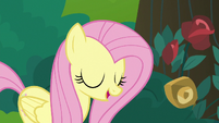 Fluttershy looking forward to quiet time S8E13