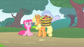 Pinkie Pie reveals she knew Twilight was following her S1E15.png