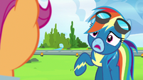 Rainbow Dash -I love them very much- S7E7