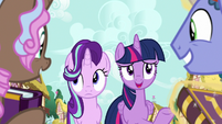 Twilight Sparkle greets the collector ponies S7E14