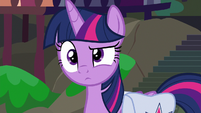 Twilight waiting for Apple Rose to continue S9E5