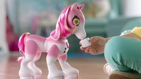 Zoomer Show Pony TV Commercial (Extended Cut)