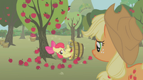Apple Bloom embarrassed in bucket S1E12