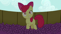 Apple Bloom in stunned surprise S5E17.png