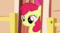 Apple Bloom looking outside the clubhouse S7E21